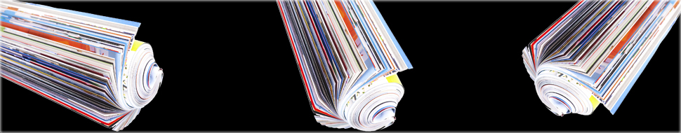 Publications Veledda Ceccoli Ph.D.